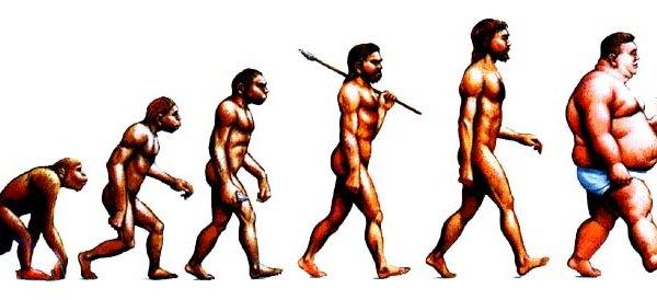 วิวัฒนาการ ของมุษย์ ภาพล้อเลียนที่เสียดเเทงใจ