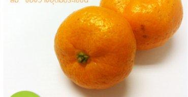 """""""ส้ม"""" ของว่างอุดมประโยชน์"""