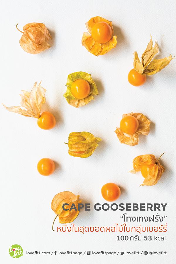 "Cape Gooseberry ""โทงเทงฝรั่ง""หนึ่งในสุดยอดผลไม้กลุ่มเบอร์รี่"