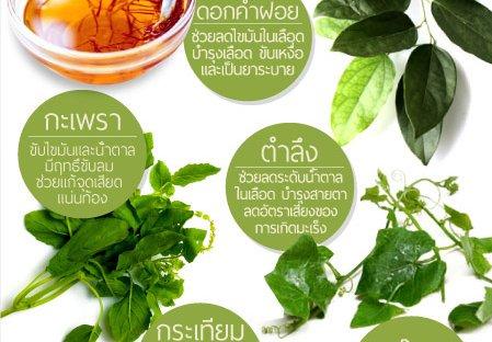 สมุนไพรพื้นบ้านไทยช่วยไขมัน