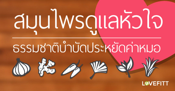 สมุนไพรไทยช่วยดูแลหัวใจ