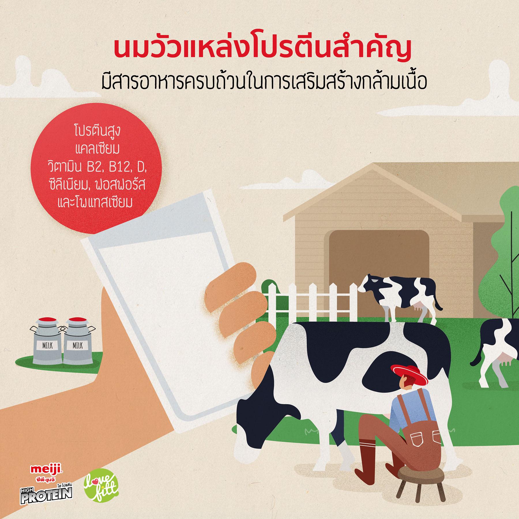 นมวัวแหล่งโปรตีนสำคัญ